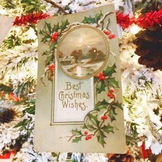 flocked christmas tree snoflock
