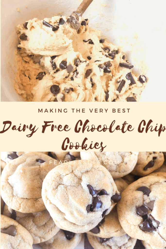 Dairy Free Chocolate Chip Cookie